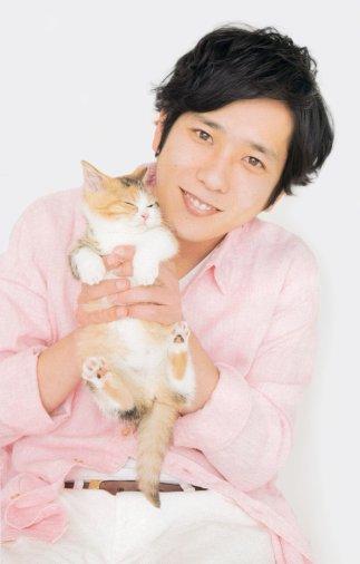 Nino cat